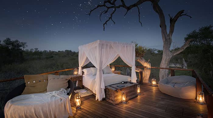 Chalkley Tree House in Sabi Sands