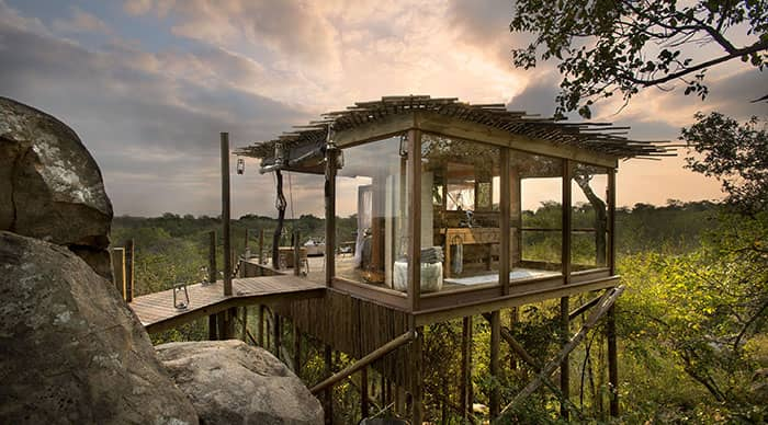 Kingston Tree House in Sabi Sands