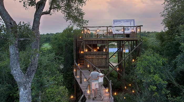 Tinyeleti Tree House in Sabi Sands