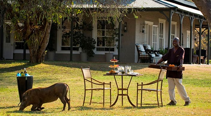Special honeymoon offer for $Beyond Sabi Sands Lodges - Bride pays 50% less