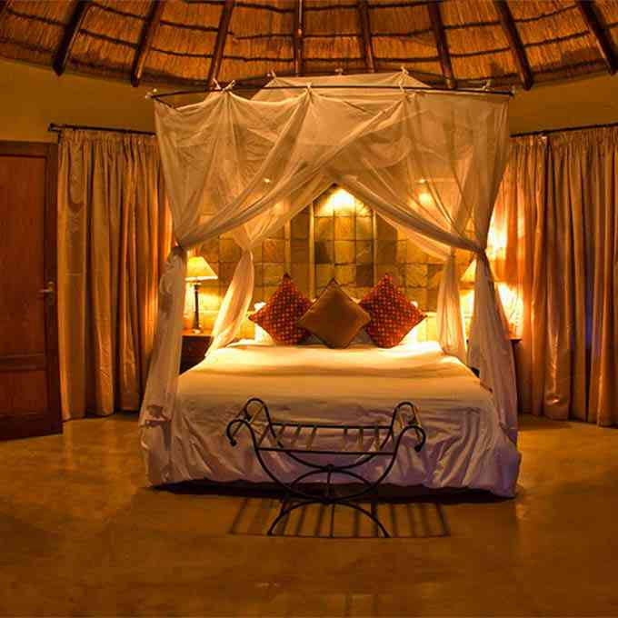 View Elephant Plains Lodge information