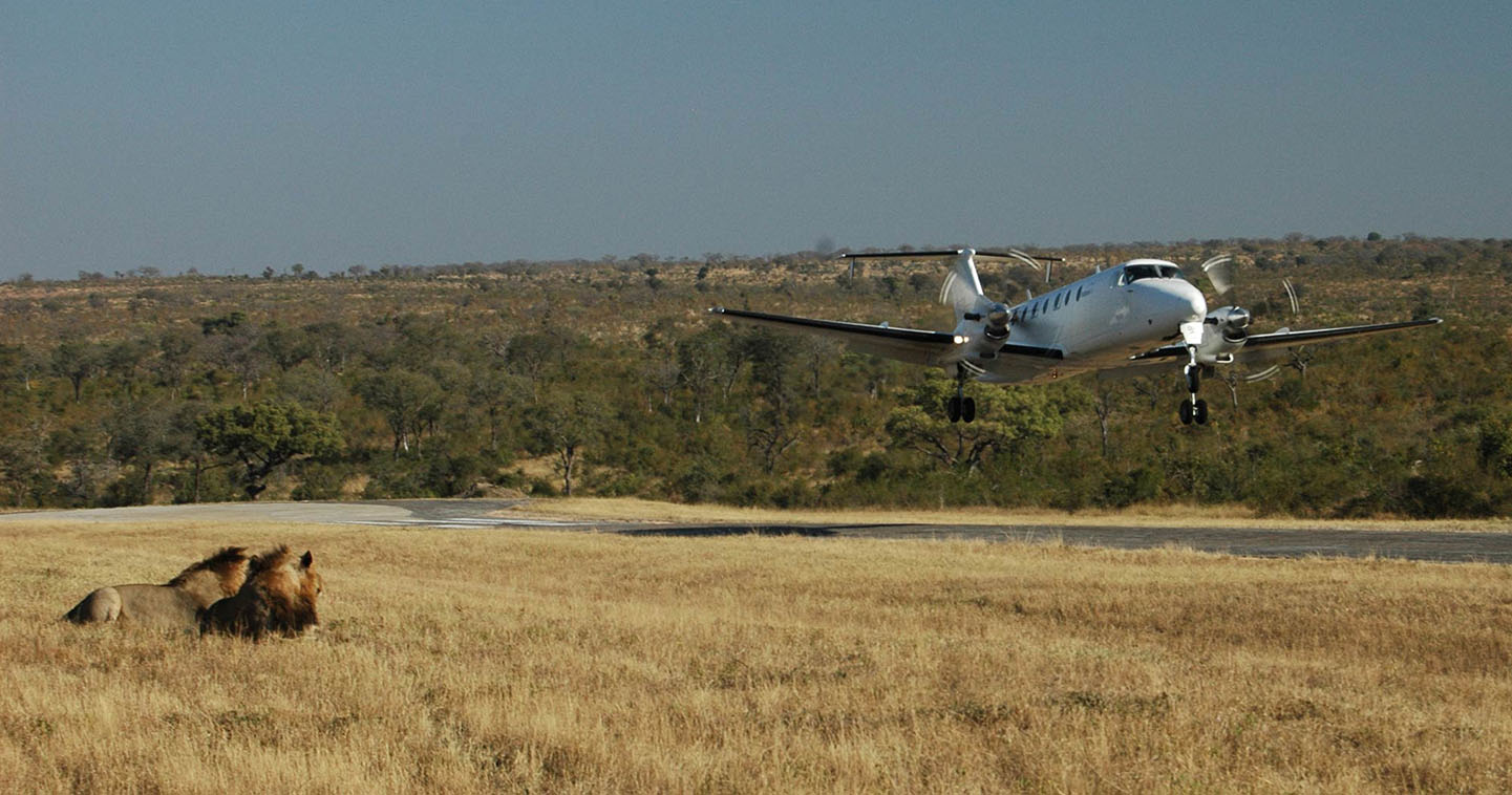 Federal Air flights Sabi Sands