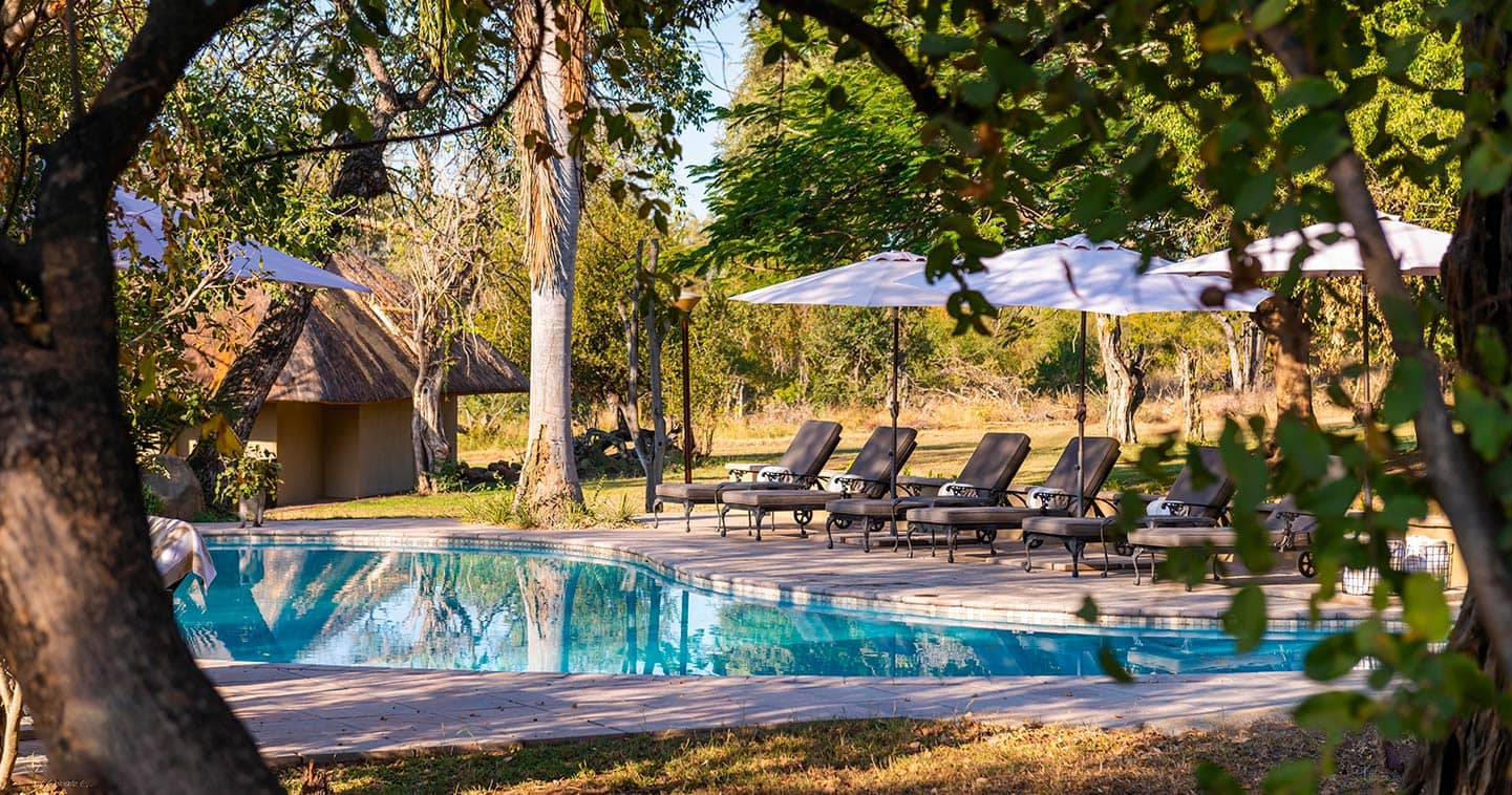 Inyati Lodge pool in Sabi Sands