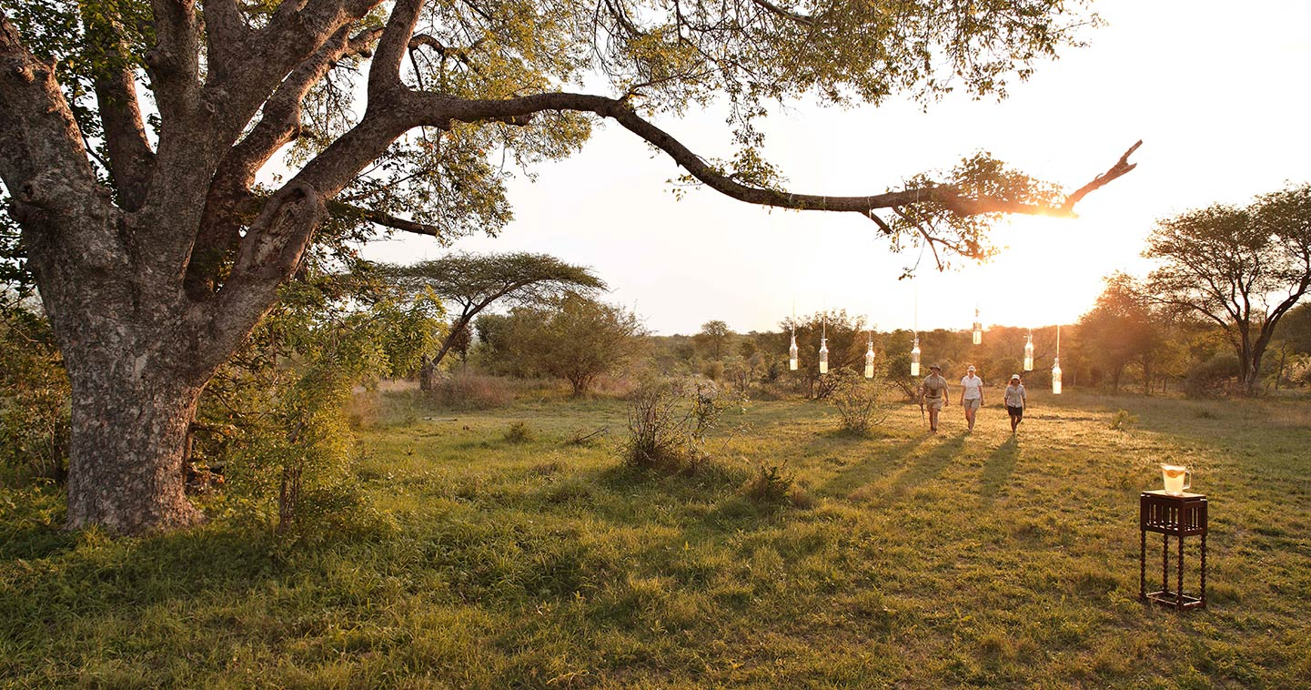 Kirkmans Kamp in Sabi Sand game drive