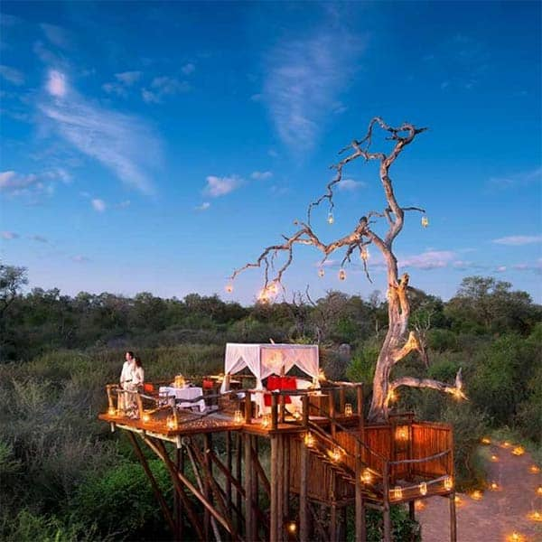 Lion Sands treehouses Sabi Sands