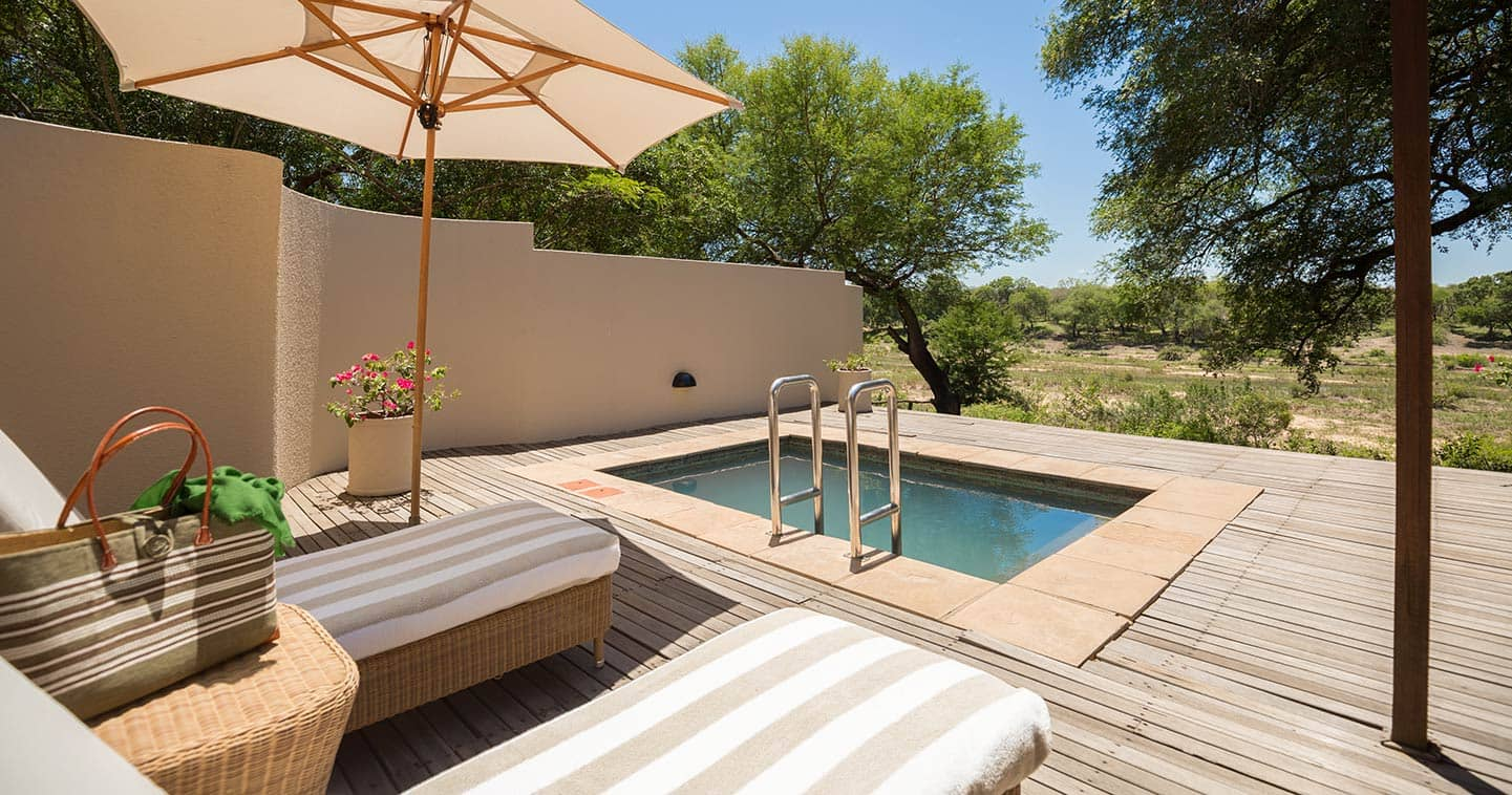 Enjoy a luxury safari at MalaMala - private plunge pool
