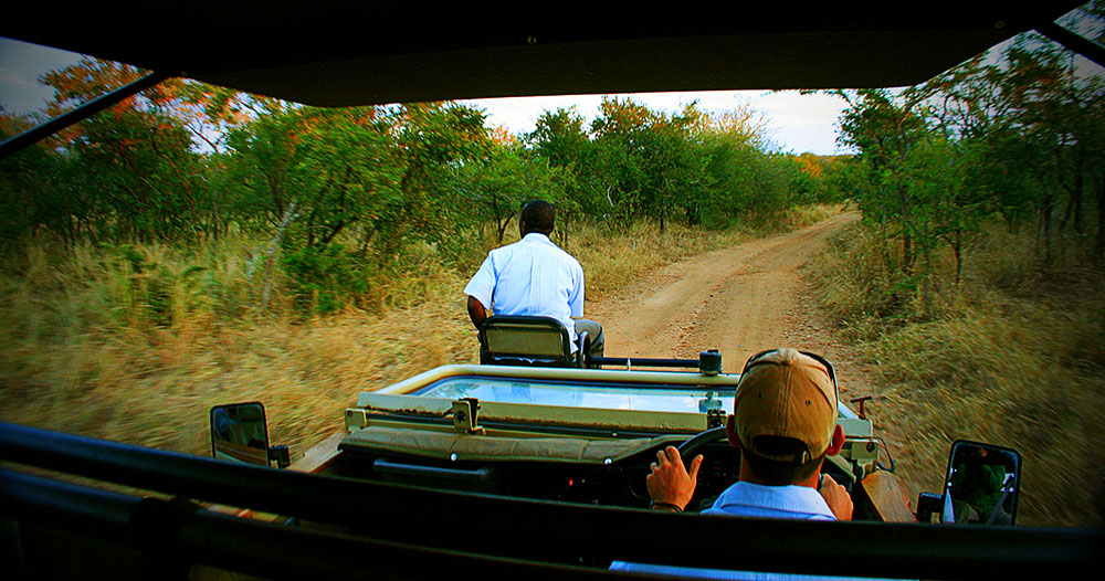 Private Game Reserve Sabi Sands