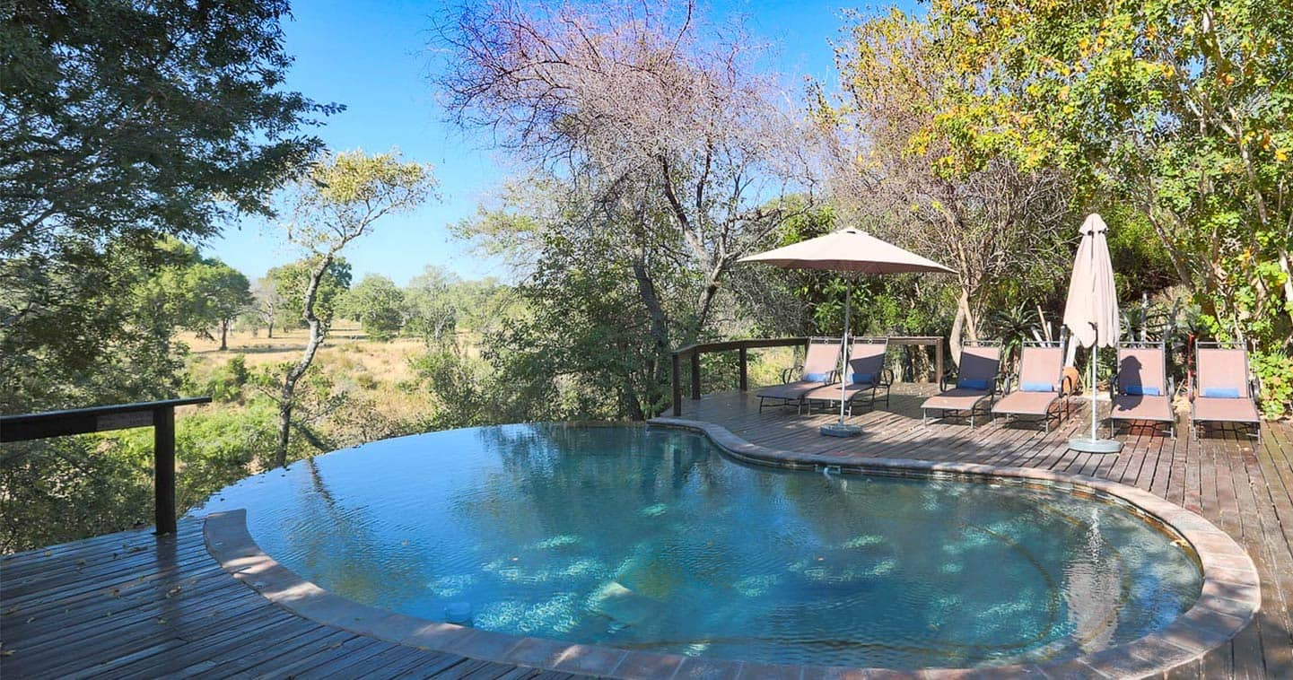 The swimming pool at Elephant Plains Lodge in Sabi Sand