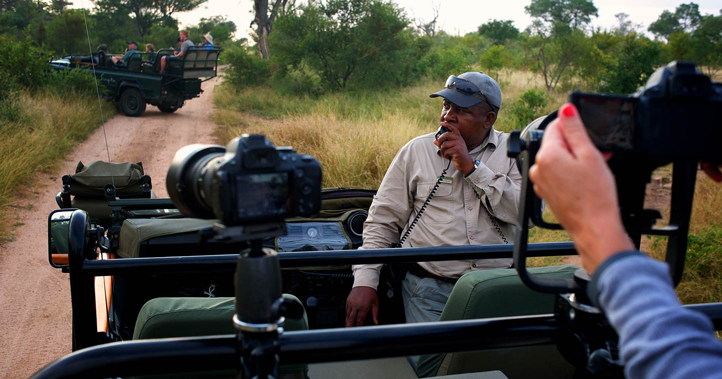 Sabi Sands South Africa safari - Safari information for your