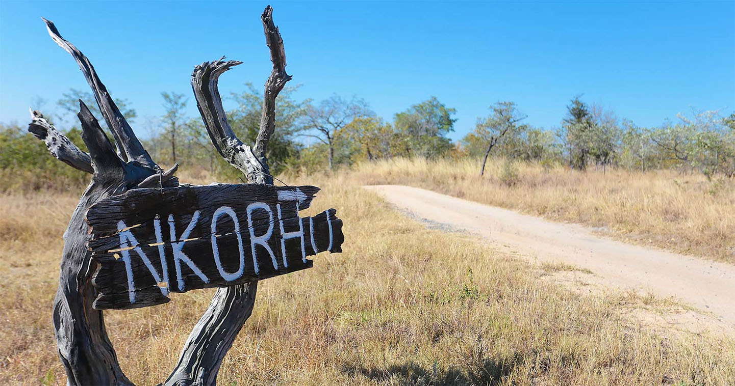 Safari sign Nkorho in South Africa