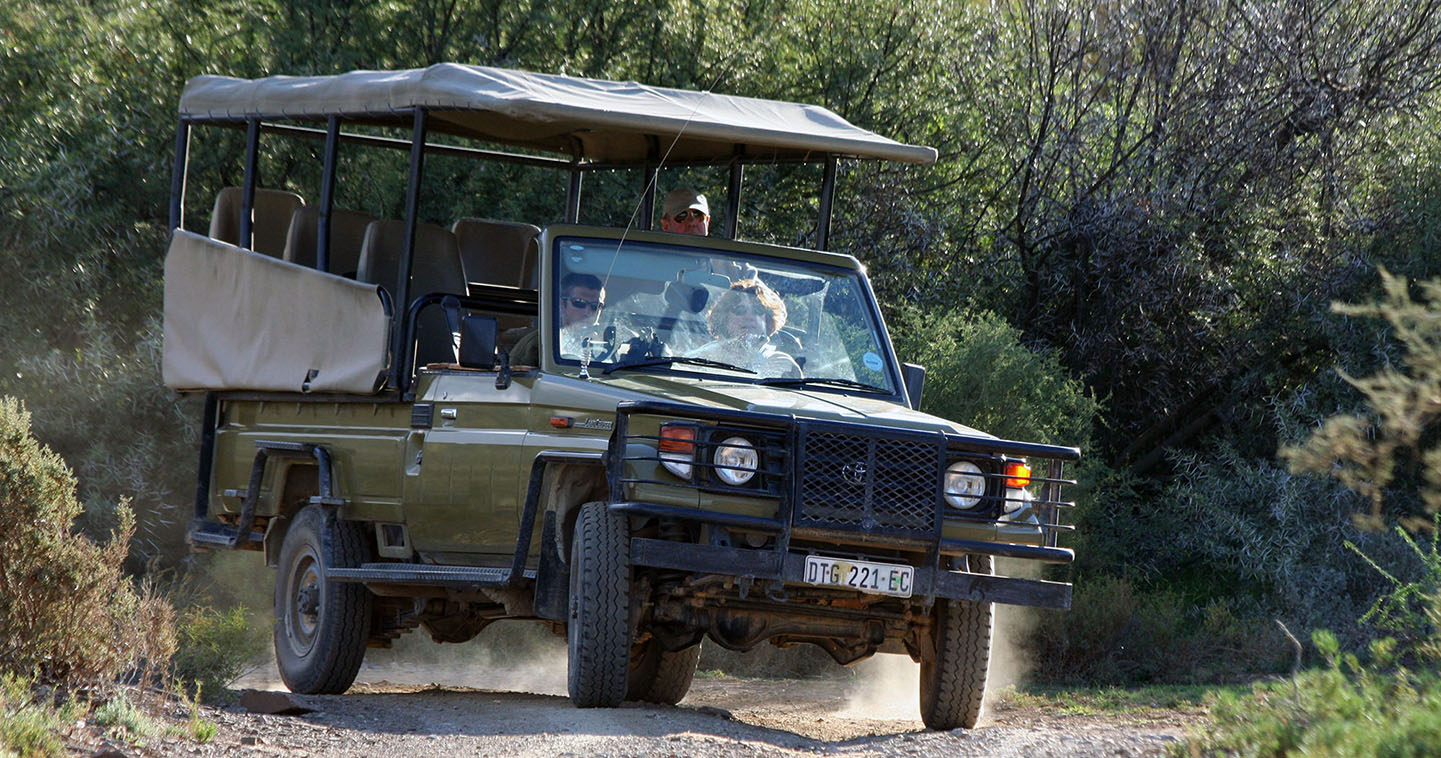 Game drive safari in South Africa