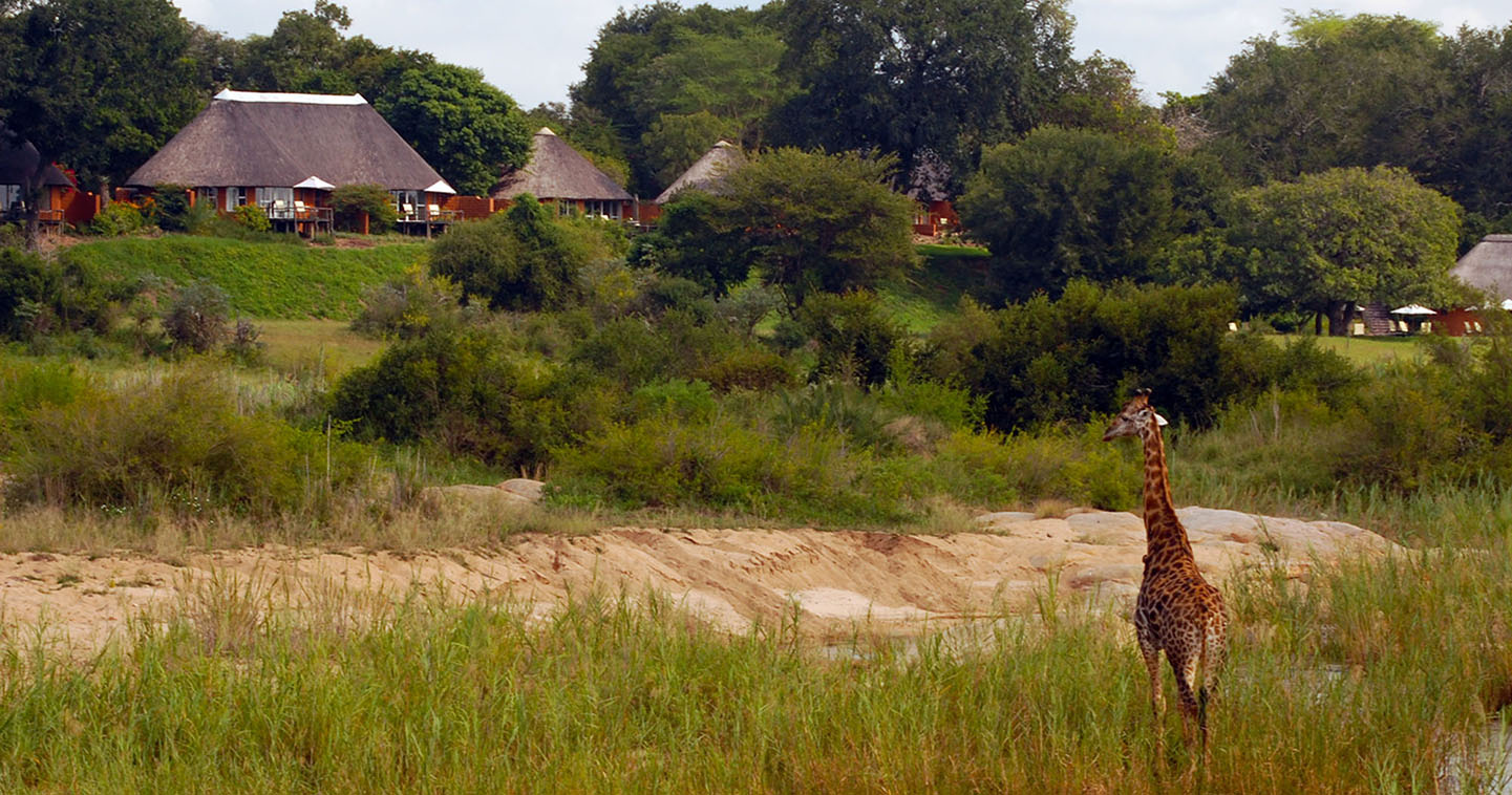 Enjoy a luxury South Africa safari at Mala Mala