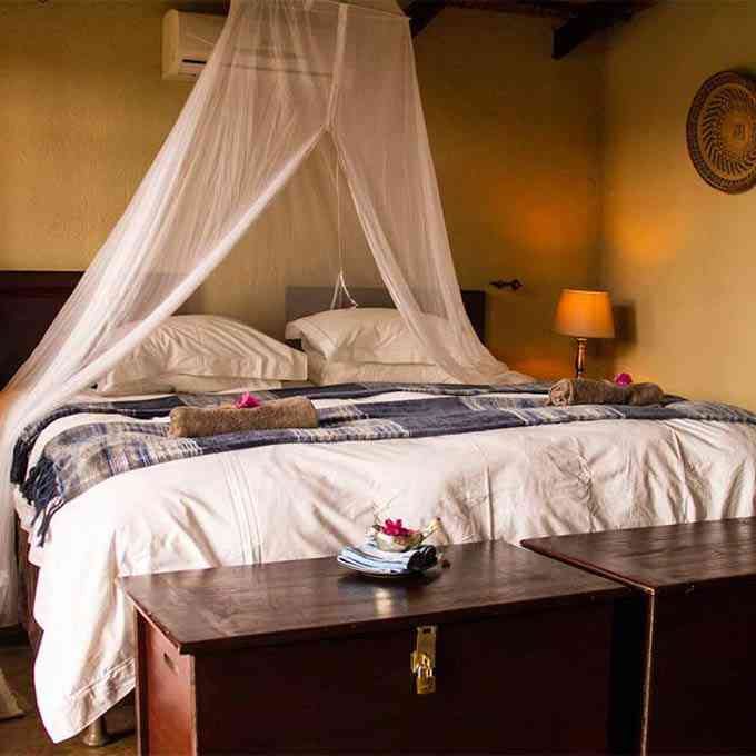 View Umkumbe Safari Lodge in Sabi Sands Game Reserve
