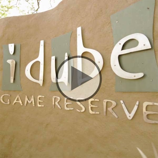 Idube Lodge video