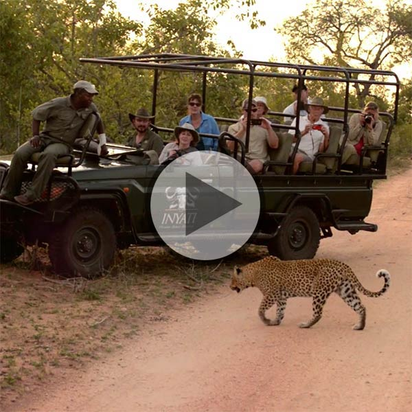 Inyati Safari Lodge video