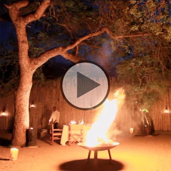 Londolozi Founder Camp video
