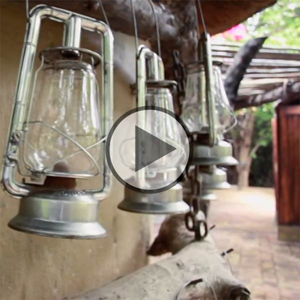 Londolozi Varty Camp video