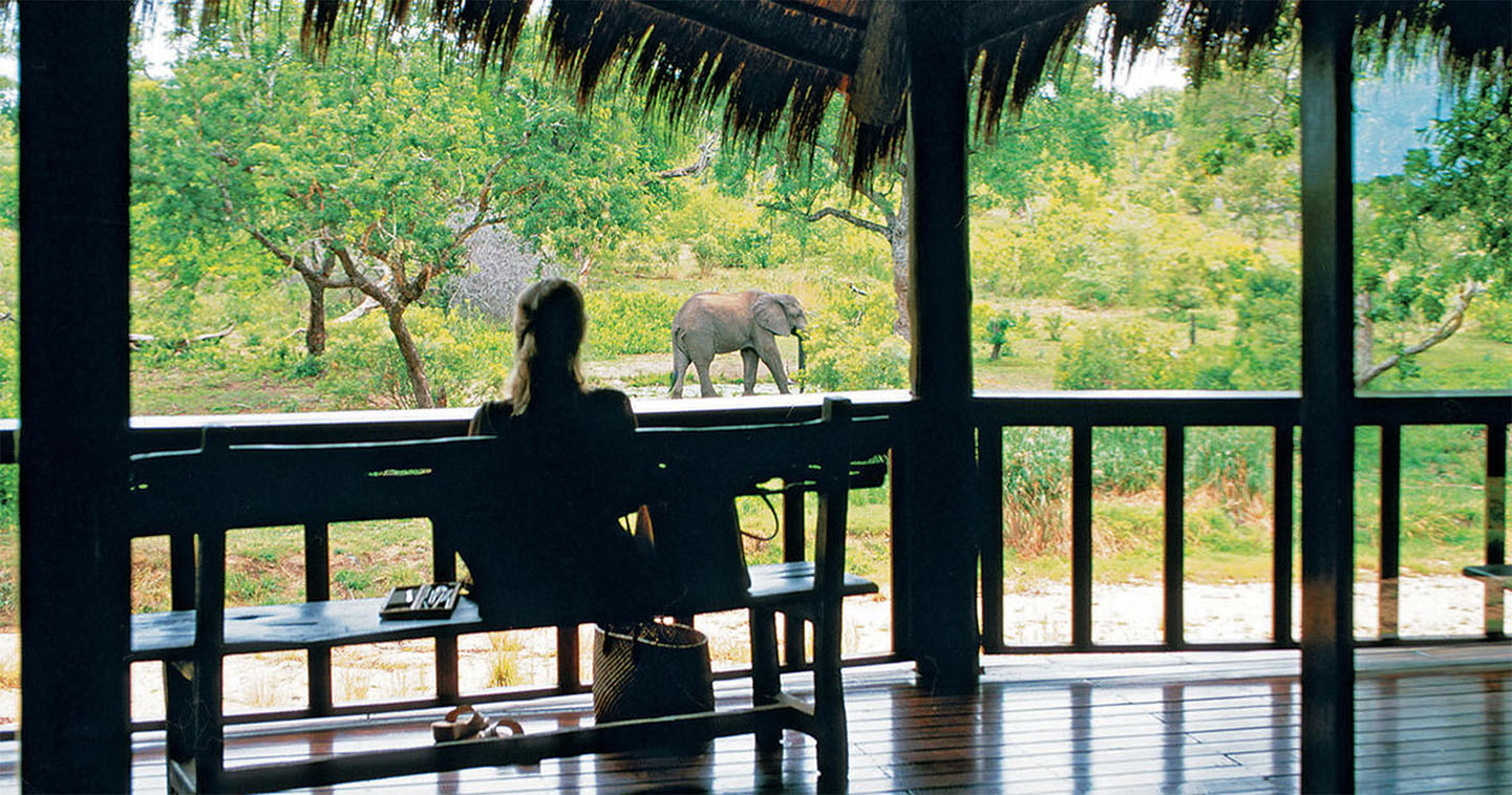 Enjoy wildlife during a South Africa safari when staying at Ulusaba